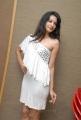 Diksha Panth Hot Stills at Mr Rajesh Audio Release