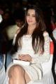 Actress Deeksha Panth Images @ Bham Bolenath Audio Release