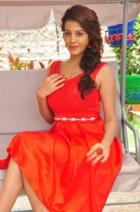 Actress Diksha Panth Photos at Banthi Poola Janaki Press Meet