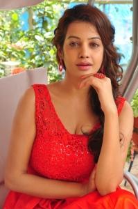 Telugu Actress Diksha Panth Hot Photos