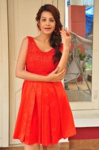 Actress Deeksha Panth @ Banthi Poola Janaki Press Meet