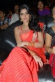 Deeksha Seth Hot Photos in Saree