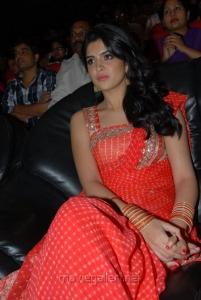 Deeksha Seth Saree Photos at Rebel Audio Launch