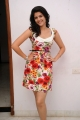 Deeksha Seth Photoshoot Stills