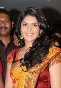 Cute Deeksha Seth in Silk Saree Pictures