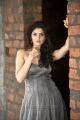 Deeksha Seth New Photo Shoot Stills