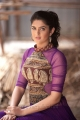 Beautiful Deeksha Seth Photoshoot Stills