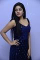 Actress Deepa Umapathy Photos @ Kalaposhakulu Movie Press Meet