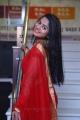 Delna Davis Red Saree Photos @ Kurangu Bommai Audio Release