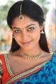 Actress Bindu Madhavi in Desingu Raja Movie Stills