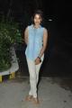 Actress Bindu Madhavi @ Desingu Raja Movie Success Meet Stills