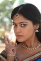 Actress Bindu Madhavi Cute in Desingu Raja Tamil Movie Stills