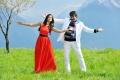 Ravi Teja, Ileana in Devudu Chesina Manushulu Stills