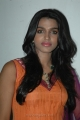 Dhanshika Latest Hot Pics