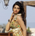 Tamil Actress Dhanshika Hot Photoshoot Stills