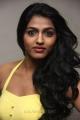 Actress Dhanshika Hot Photos @ We Awards 2013