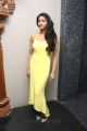 Tamil Actress Dhansika Hot Photos in Yellow Long Dress