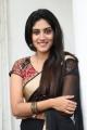 Actress Dhanya Balakrishna Saree Photos @ Software Sudheer Movie Success Meet
