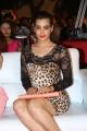 Actress Diksha Panth Images @ Ee Varsham Sakshiga Audio Launch