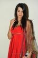 Hormones Heroine Diksha Panth Latest Cute Photo Shoot Pics