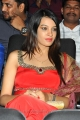 Heroine Diksha Panth at Hormones Audio Release Function