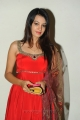 Diksha Panth Latest Stills