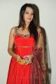 Acterss Deeksha Panthu Latest Stills