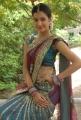 Diksha Panth Hot Saree Pics