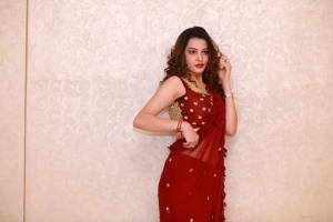 Operation 2019 Movie Actress Diksha Panth Red Saree Photos