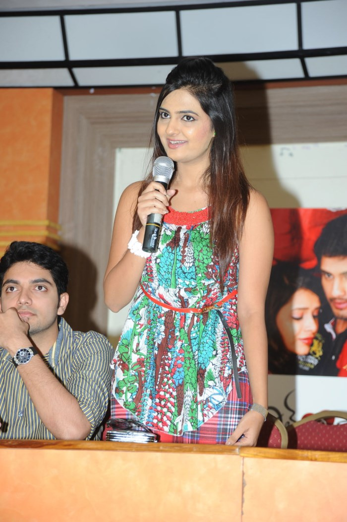 Dil Deewana Movie Audio Success Meet Stills