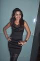 Actress Dimple Chopade Hot Stills at Yaaruda Mahesh Trailer Launch