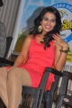 Tamil Actress Dimple Chopade Hot Pics in Light Red Skirt