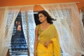 Dimple Chopda in Yellow Saree Hot Stills @ Romance Movie
