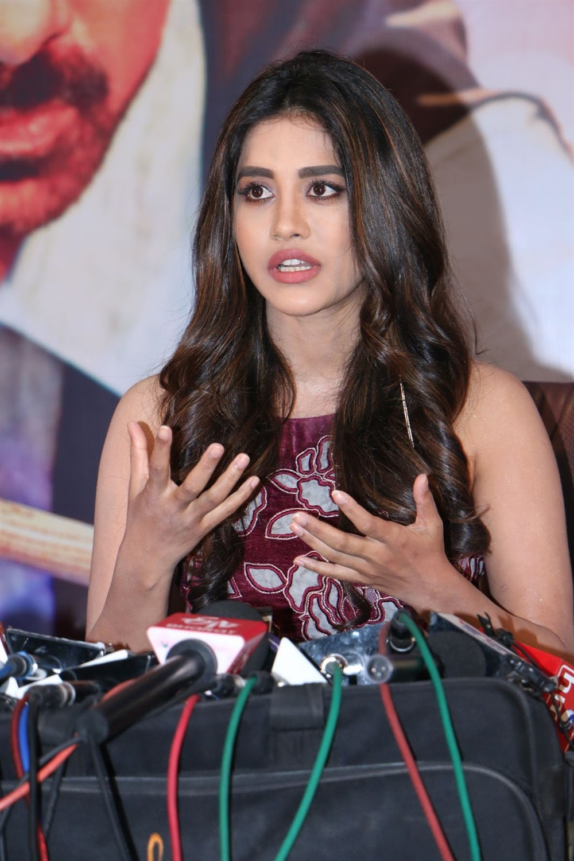 Actress Nabha Natesh @ Disco Raja Movie Press Meet Stills