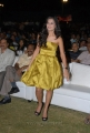 Actress Disha Pandey Latest Photos in Yellow Gown