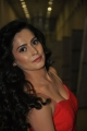 Disha Pandey Hot Pics @ Ctrl-C Audio Launch
