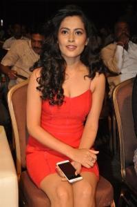 Actress Disha Pandey Pics @ Ctrl-C Audio Release