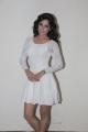 Actress Disha Pandey Latest Hot Stills in White Skirt