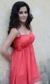 Disha Pandey in Light Red Dress Hot Photoshoot Pics