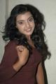 Actress Divya Nagesh Pictures
