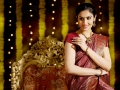 Ponnar Shankar Divya Parameshwaran Photo Shoot Images