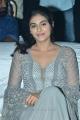 Actress Divyansha Kaushik Photos @ Majili Pre Release