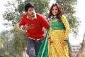 Sandeep Kishan, Nisha Agarwal in DK Bose Movie New Stills