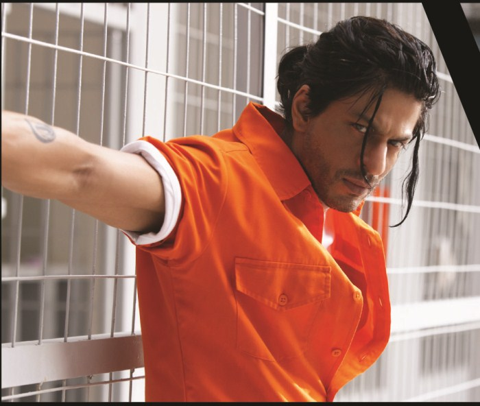 don 2 full movie hd 1080p