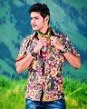 Dookudu Mahesh Babu Stills
