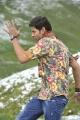 Dookudu Mahesh Babu Shirts Images