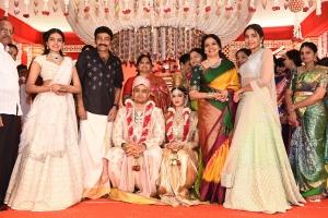 Actor Rajasekhar Nephew Karthik Wedding Photos