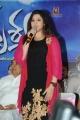 Actress Meena @ Drushyam Movie Success Meet Stills
