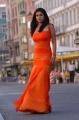 Dubai Seenu Nayanthara Hot Stills