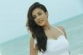 Actress Mishti in Duster 1212 Movie Stills HD